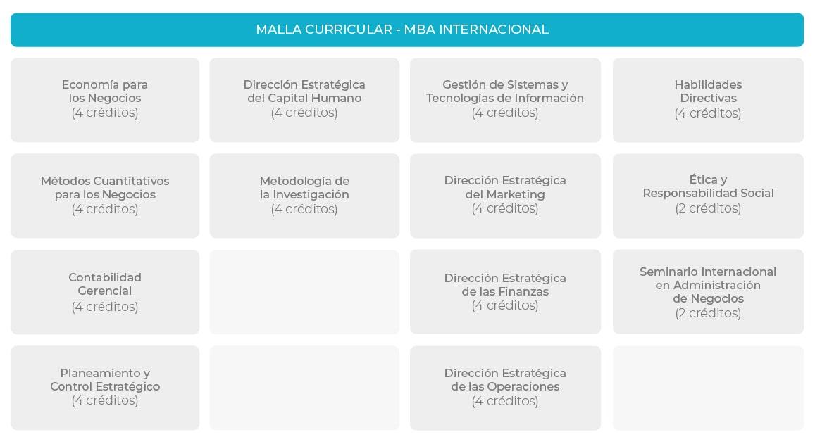 Plan de Estudios MBA Internacional
